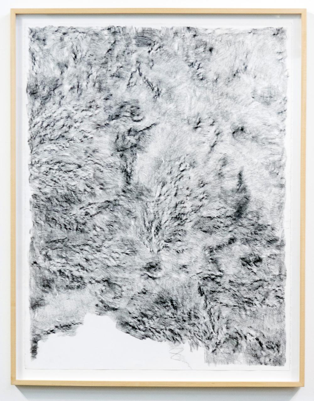 MLSL_02_ElysianPark, 2015 Conté on rag paper Paper 49.75 x 38.5 in (126.37 x 97.79 cm) Framed 52.25 x 42.5 in (132.72 x 107.95 cm)