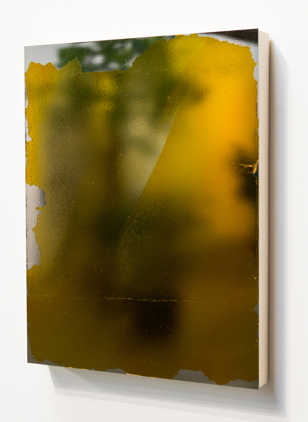 MLSL_12_Bunny, 2015  Gold tint on stainless steel  18 x 14 in (45.72 x 35.56 cm)
