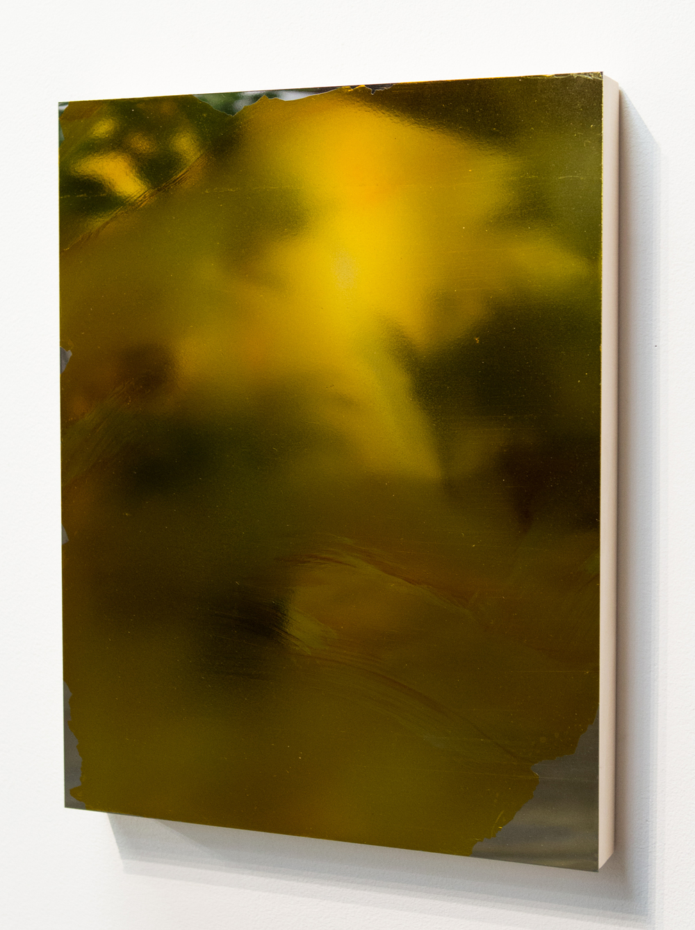 MLSL_14_Bunny, 2015  Gold tint on stainless steel  18 x 14 in (45.72 x 35.56 cm)