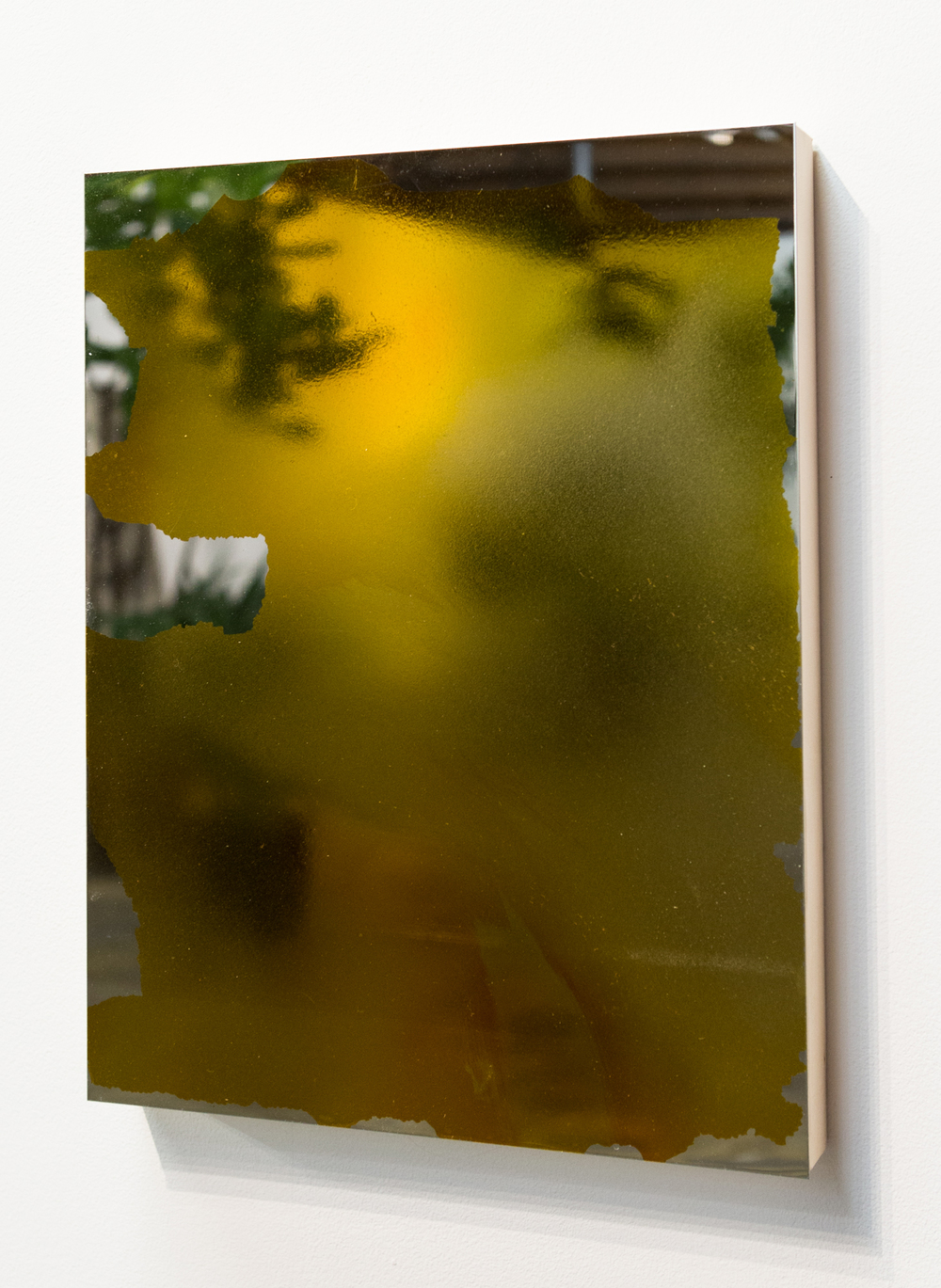 MLSL_15_Bunny, 2015  Gold tint on stainless steel  18 x 14 in (45.72 x 35.56 cm)