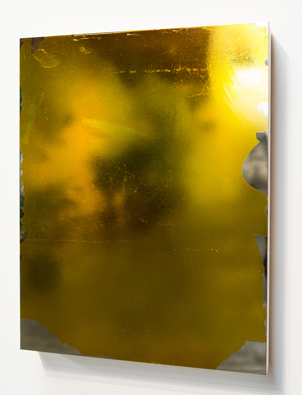 MLSL_20_Bunny, 2015  Gold tint on stainless steel  18 x 14 in (45.72 x 35.56 cm)