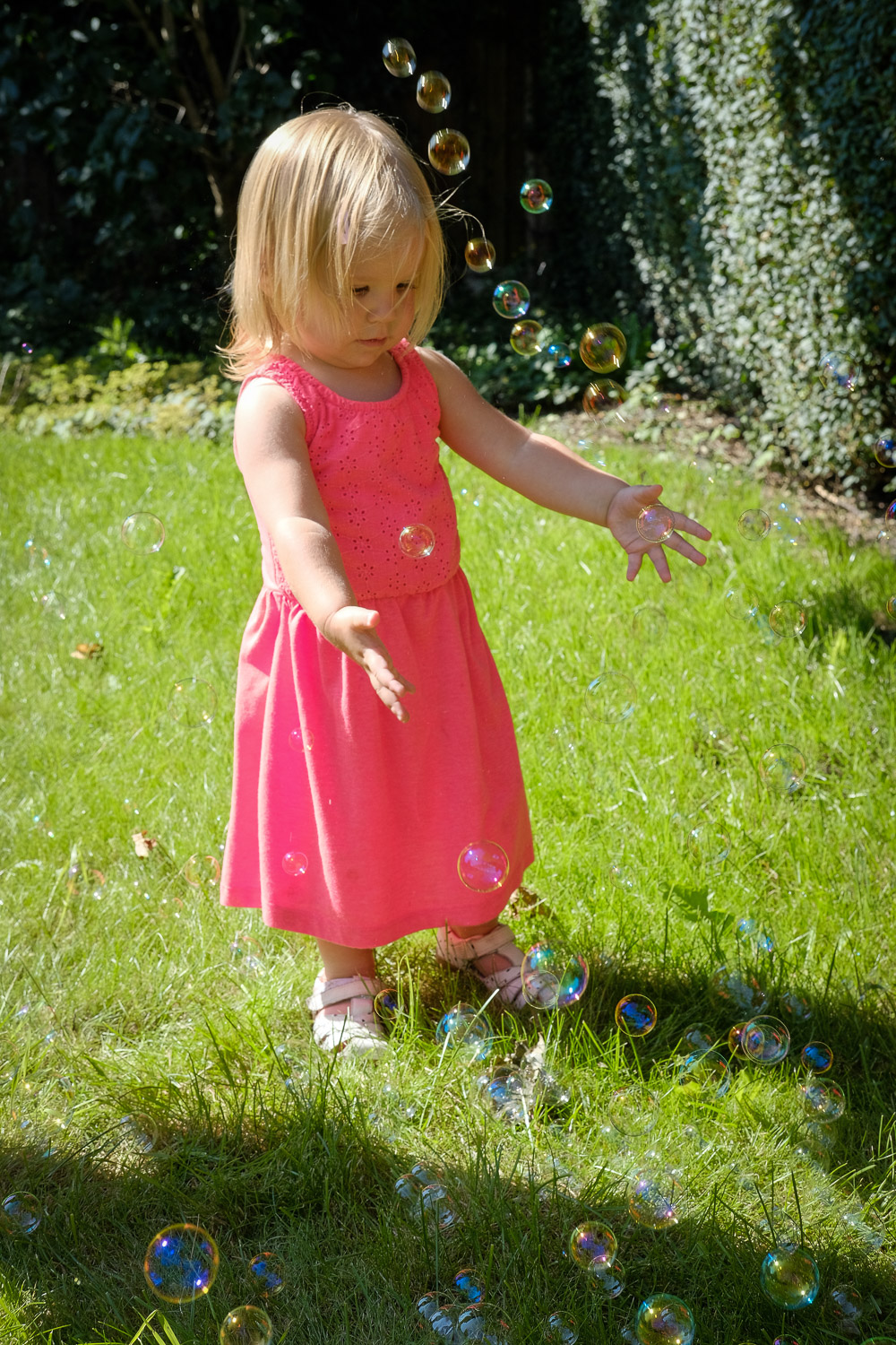 Documentary family photo of a girl toddler bursting bubbles on a sunny day, wearing a bright dress.