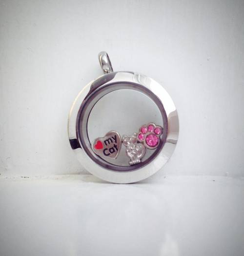 bsmall plain cat locket.jpg