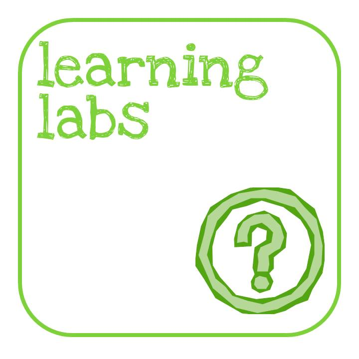 qr icon - learning labs 2014.jpg