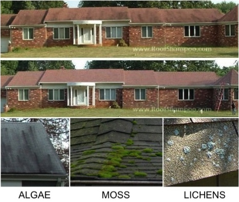 roofcleaningmonmouth.jpeg