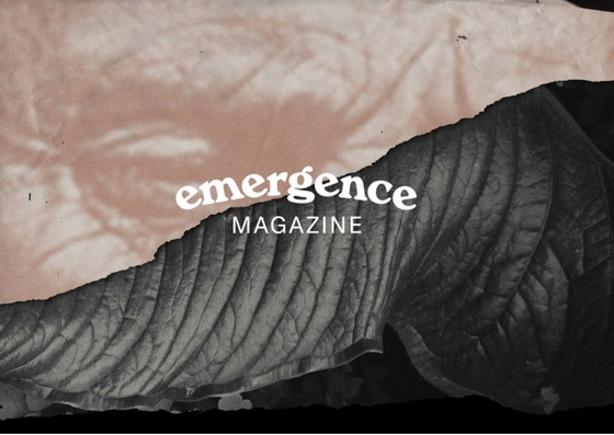 You can find Emergence at https://emergencemagazine.org/