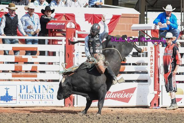 Sage Kimzey On Bottle Rocket for 92.50 Points at the Calgary Stampede! Sage Kimzey, walked out of Canada with a new title, 2015 Calgary Stampede Champion Bull Rider.