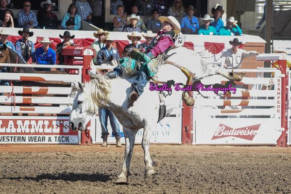 Clint Laye On Virgil for 88.00 Points! Clint Laye is your 2015 Calgary Stampede Bareback Riding Champion.