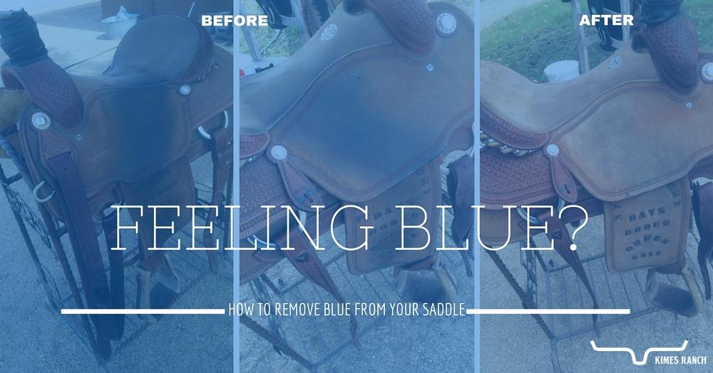 Feeling Blue? — Kimes Ranch