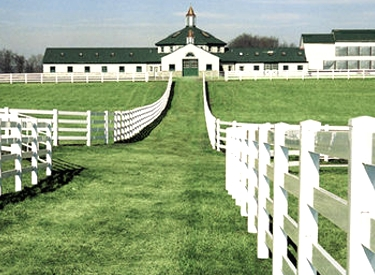 Picture Courtesy of: http://www.vinylfenceanddeck.com/white-pvc-horse-fencing/