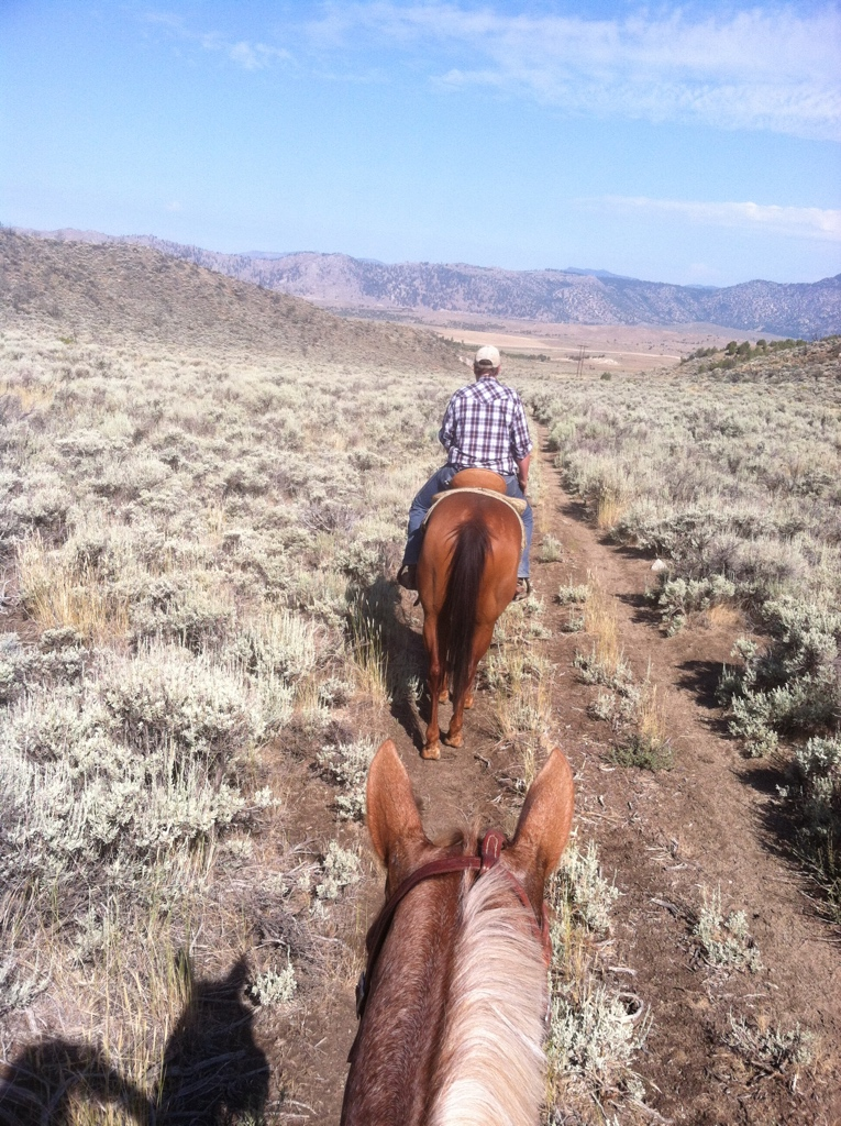 Nevada with Kat Ennis, where I learned to love the sage brush, and cowboy poetry.