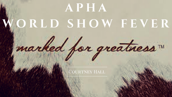 APHA WORLD SHOW FEVER-2.png