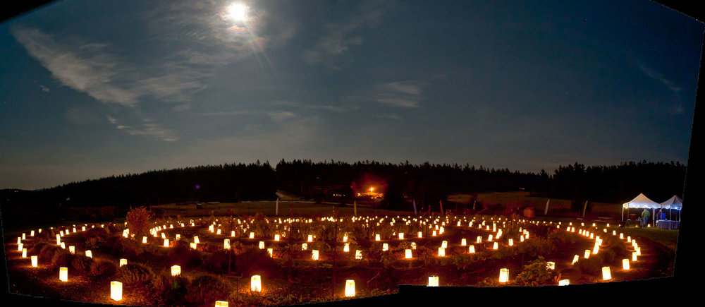 Winter's night Labyrinth