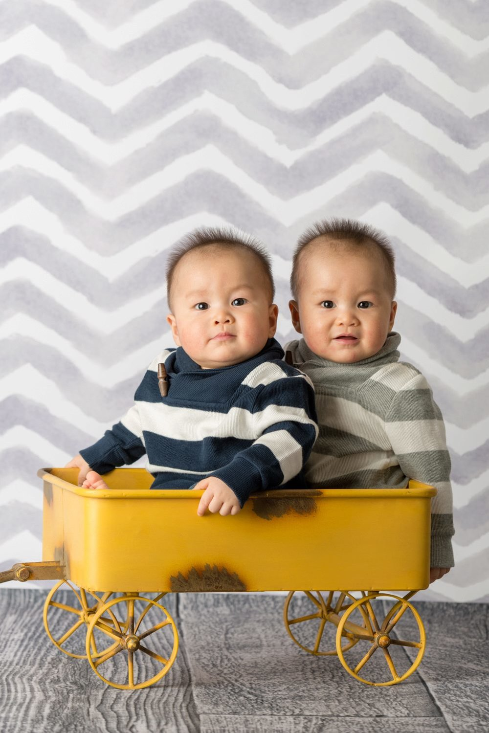 twin babies on grey background in yellow wagon