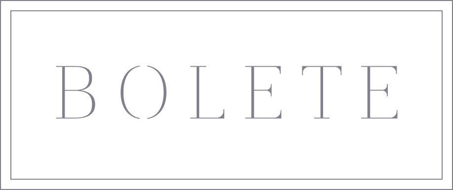 logo BOLETE mauve box.jpg