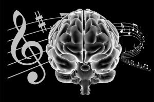 The music brain