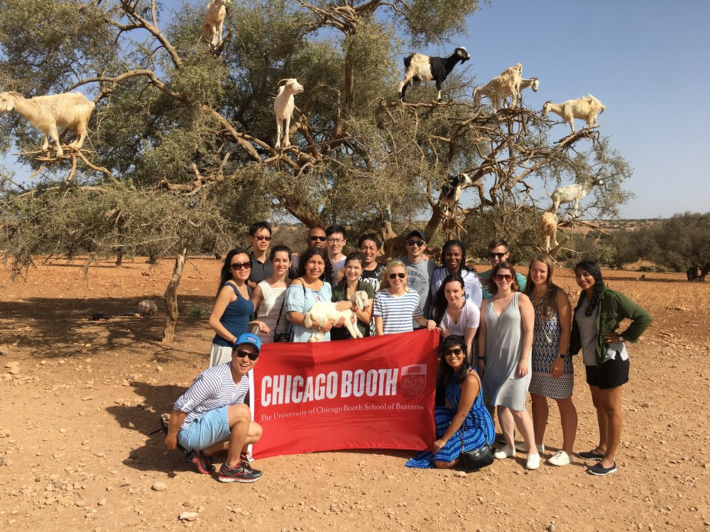 Group poses in front of an argan tree full of goats on the way to the seaside town of Essaouira