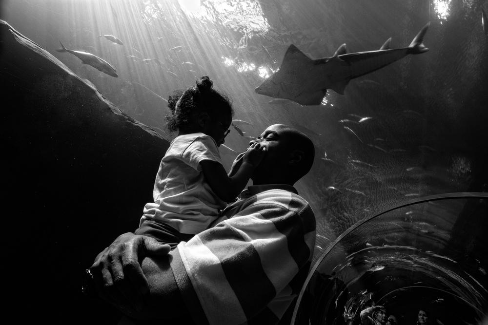Carlos and Selah Richardson at Georgia Aquarium. 2012© Zun Lee
