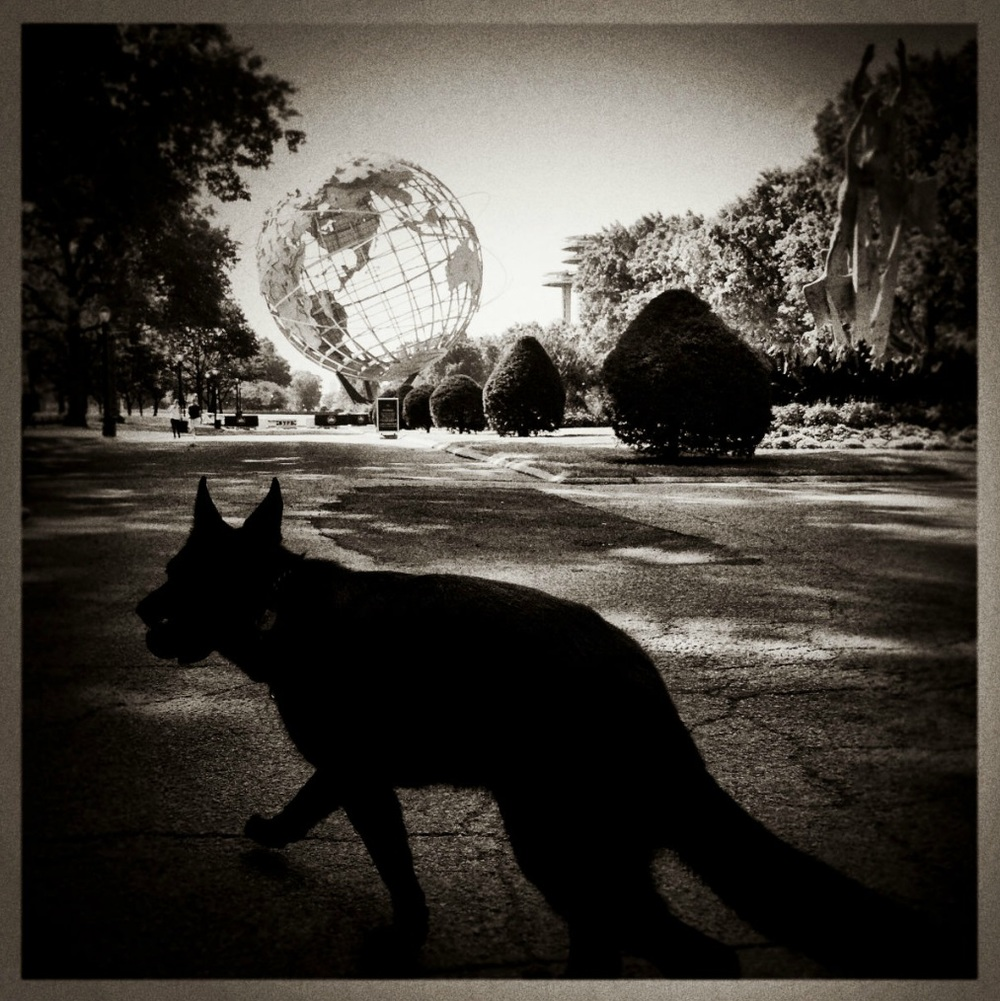 iPhone Work:    Flushing Meadow Park. © Mark Peterson/   ReduxPictures