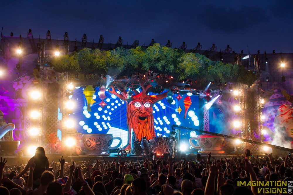 Nocturnal Wonderland 201  3