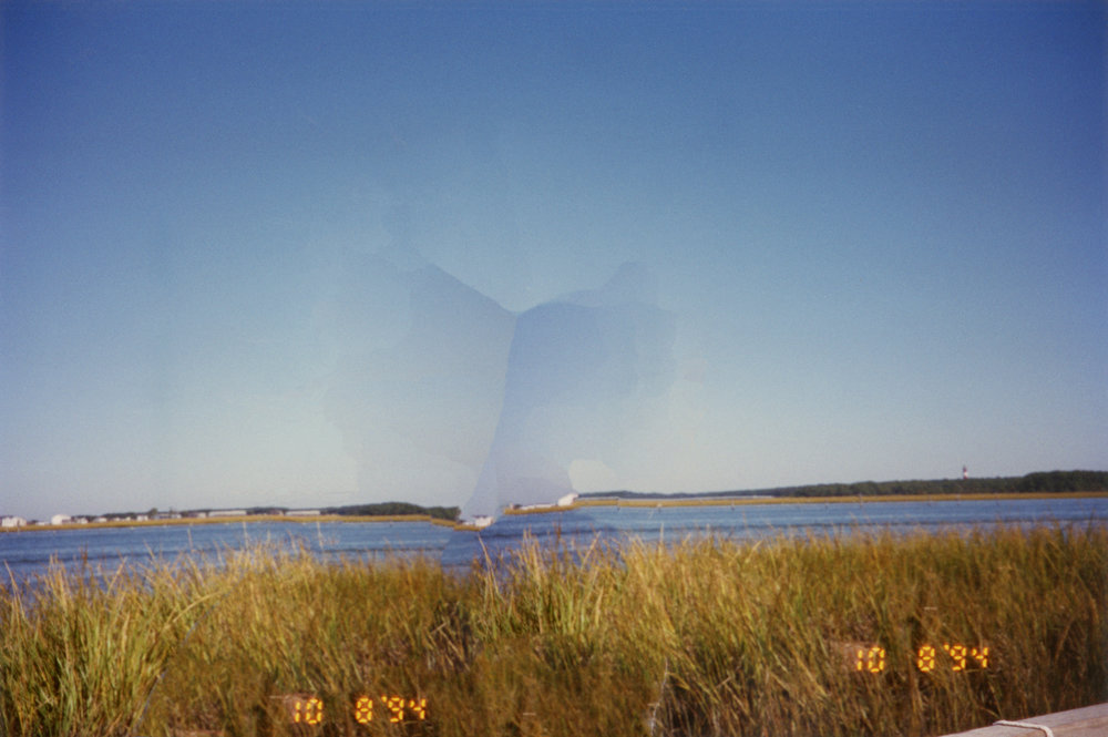 Chincoteague2.jpg