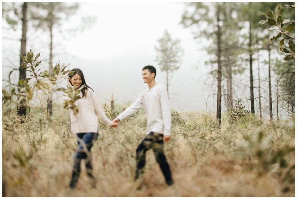Los Angeles Forest Warm and Artistic Engagement Session-9031.jpg