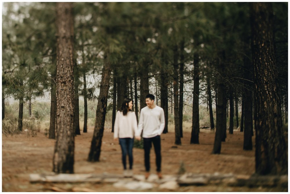 Los Angeles Forest Warm and Artistic Engagement Session-8969.jpg