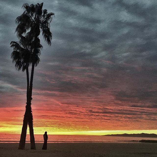@the_2500 shot me in Playa del Rey 🌞 #sexysunset #beach #thankyousmog