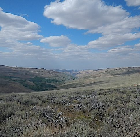 Scouting Trip to Southeast Oregon_Page_48_Image_0002.jpg