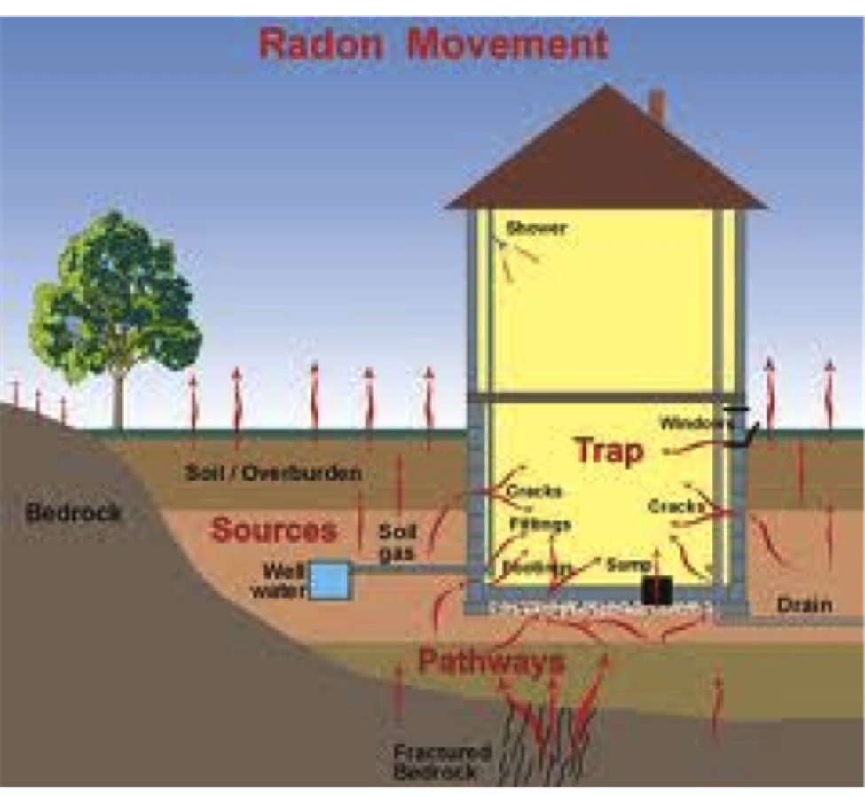 Radon movement.png
