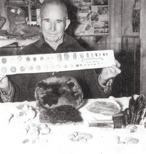 Lon Hancock in his home museum, showing fossil nuts, seeds, and leaves from the Clarno Nut Beds.