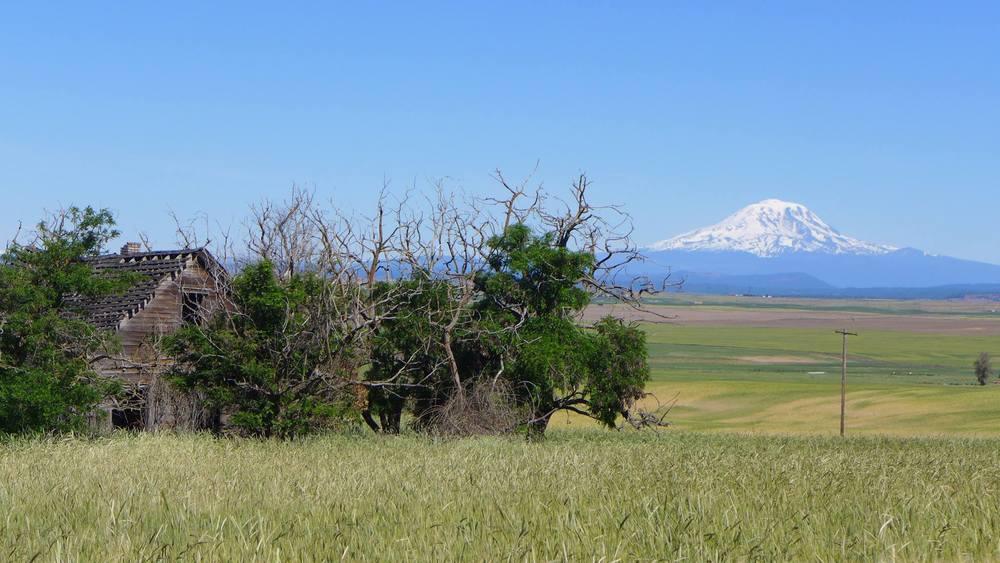 view farmhouse mountain.jpg