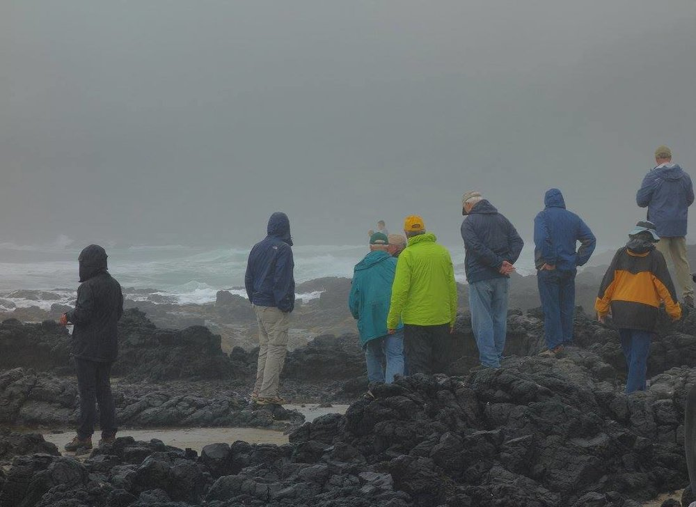 GSOC group watches the rising waves at Cape Perpetua, then decides to go back to the cars as a large wave washes over the platform of basalt.