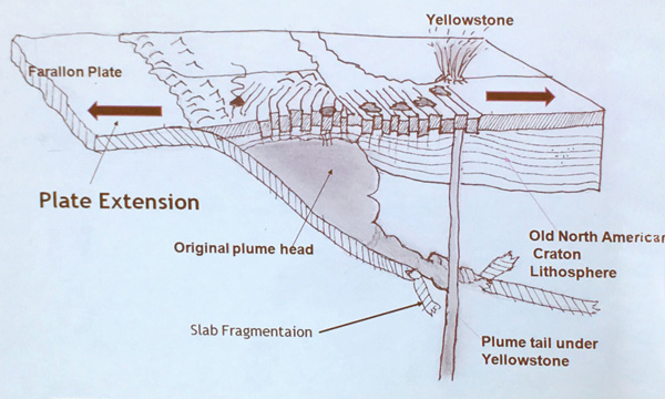 Size of Plume Head and Dislocation of Plume Tail
