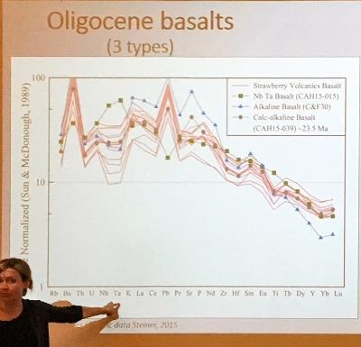 Cahoon explains the geochemical analysis results for the Strawberry Mountain volcanics in comparison to standard basalt types.