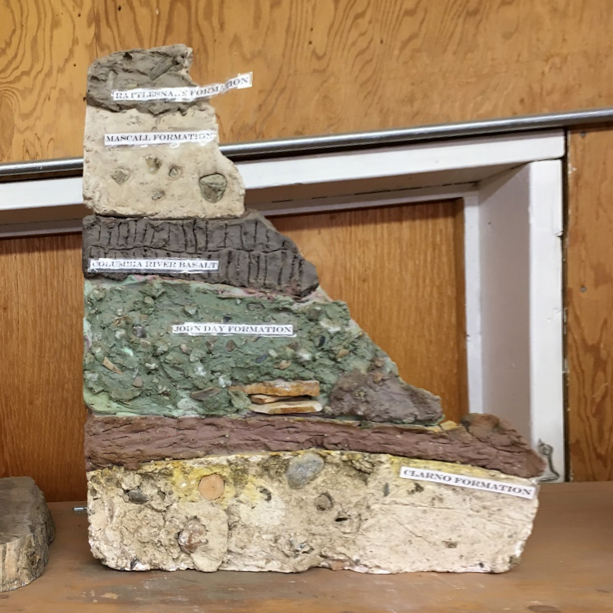 This model of the stratigraphy of the JDNM was found in Lon's Lab. Photo by author.