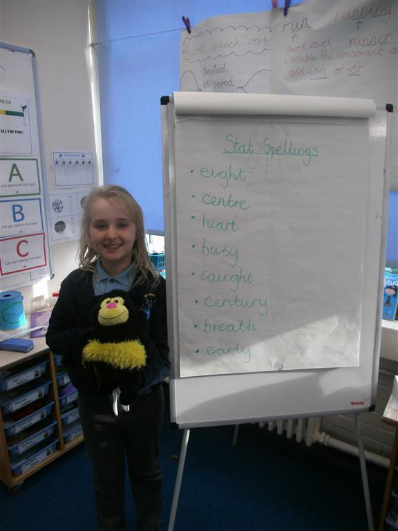 Spelling Bee - This week we started our 'Spelling Bee Challenge' where we practise and learn a group of spellings and the children who improve their test scores the most become our 'Spelling Bee Champions'. This week Connie made the most improvement and has been sitting with our cuddly friend. Well done Connie!