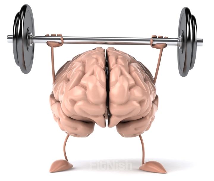 Fit Brain