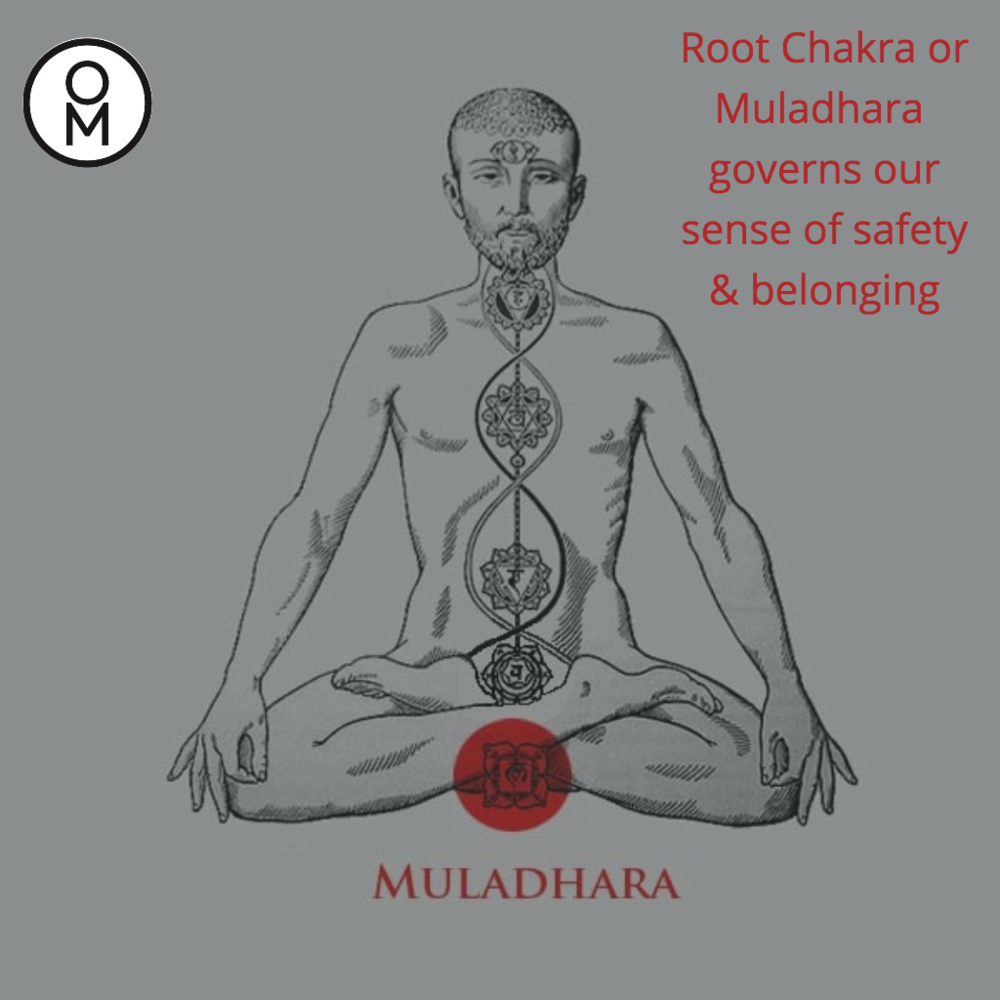 Align Root Chakra.png