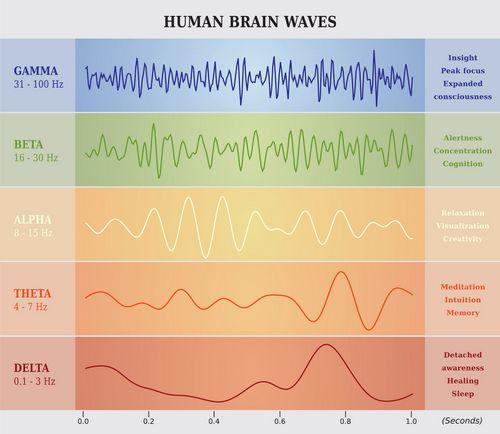 brain-waves-chart.jpg