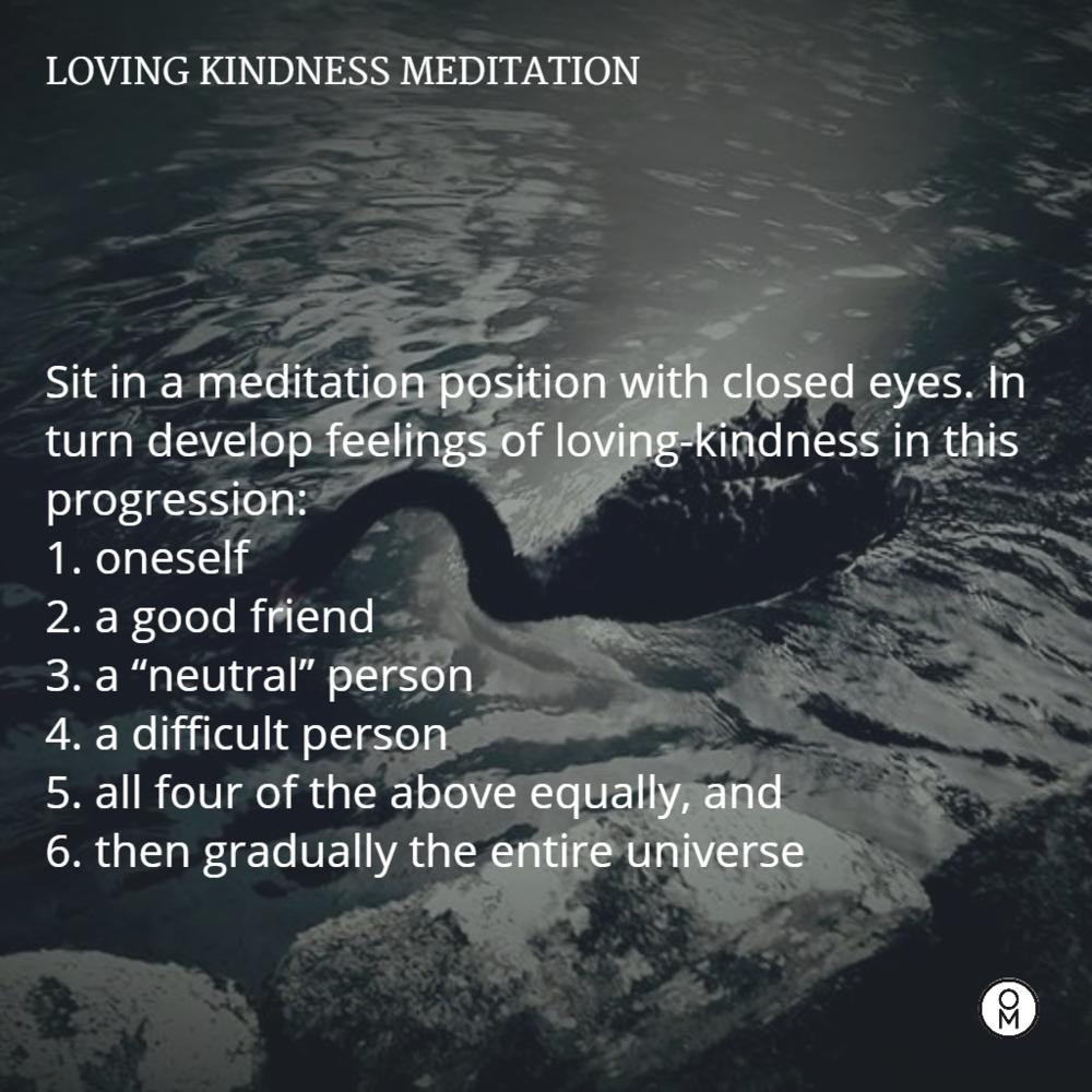 swan loving kindness meditation (1).png