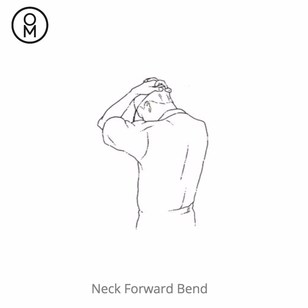 chair yoga - neck forward bend.png