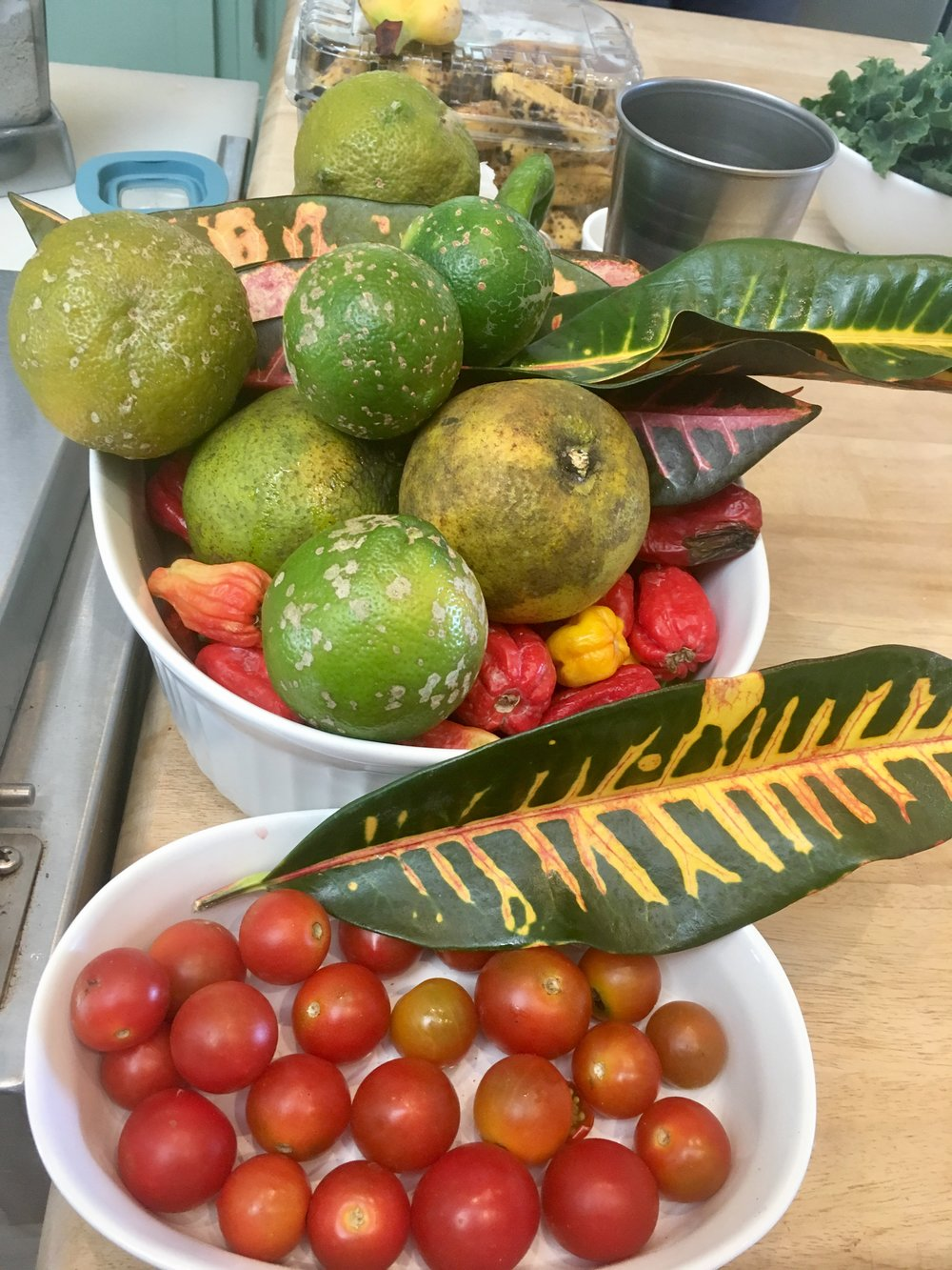 Selection veg bowls.jpg