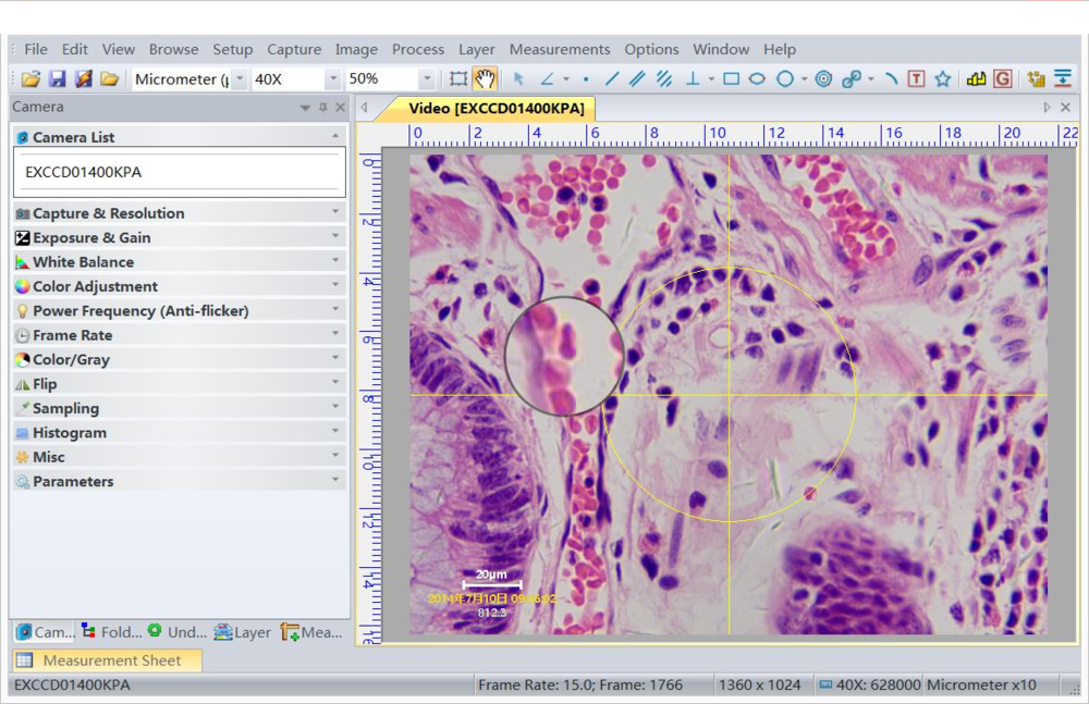 MagVision Image Analysis Software     Advance software for Image analysis and processing