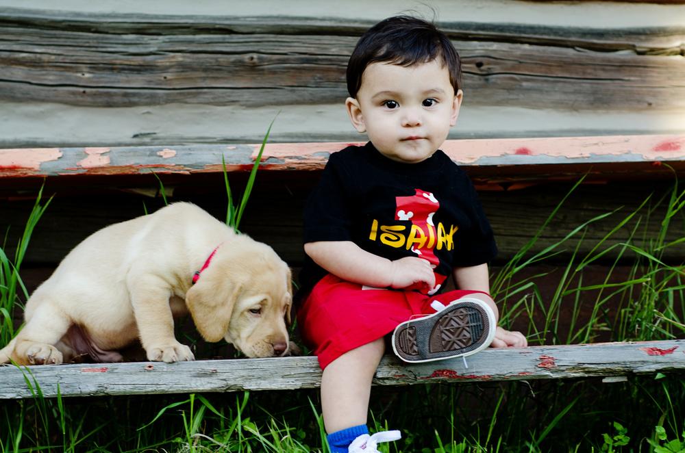 baby photo with puppy - fairbanks alaska photographer - pioneer park photos