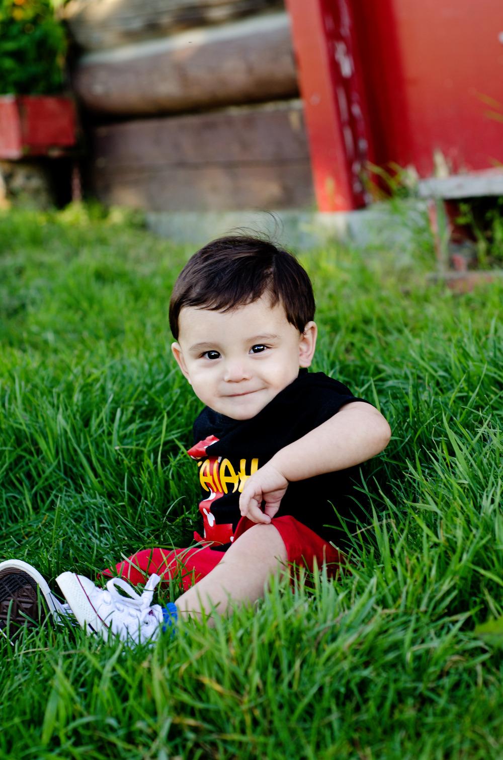 fairbanks alaska children's photographer - baby in grass photos