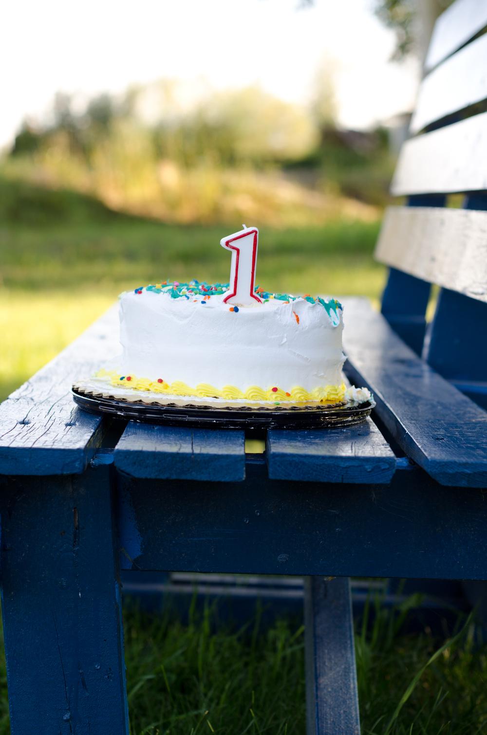 one year old cake smash cake photo - pioneer park
