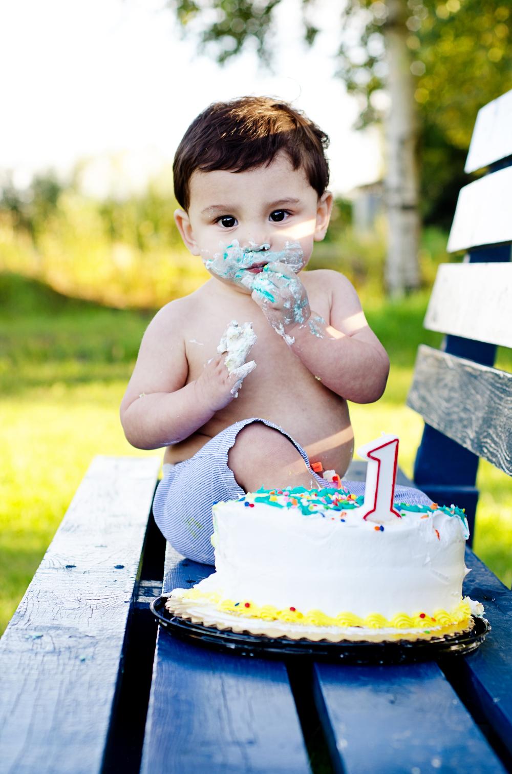 one year old cake smash - fairbanks alaska childrens photos