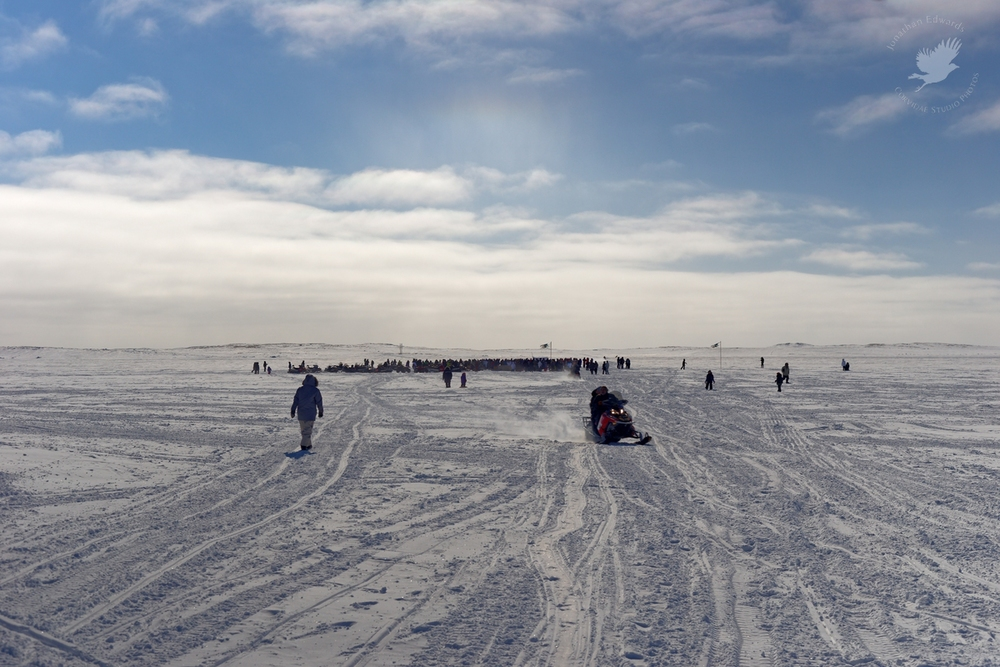 Crowd gathering on the ice for the finish of the Ivakkak dog sled race