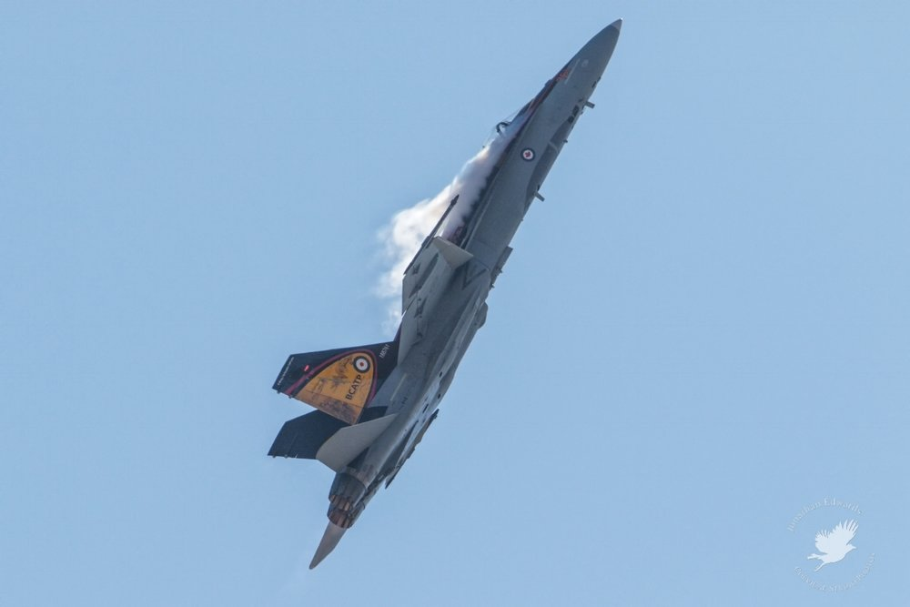 CF-18 Hornet